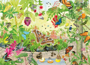 Kijkplaat Vlinderkas Artis