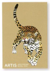 Jaguar magneet ARTIS