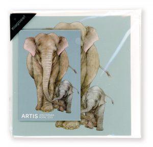 Olifant magneet en correspondentiekaart ARTIS